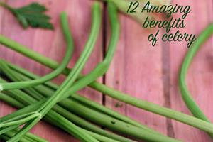 benefits of celery ajmoda