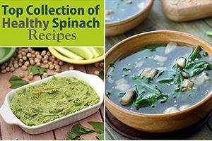 top collection of healthy spinach recipes