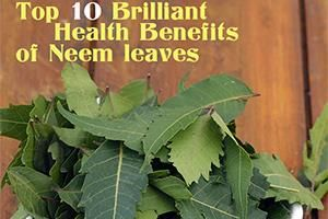 top health benefits of neem leaves