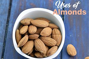 uses of almonds badam