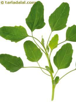 Bathua (Cheel Bhaji) Glossary  Health Benefits, Nutritional
