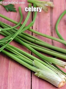 Celery Glossary Uses Benefits Recipes With Celery Tarladalal Com