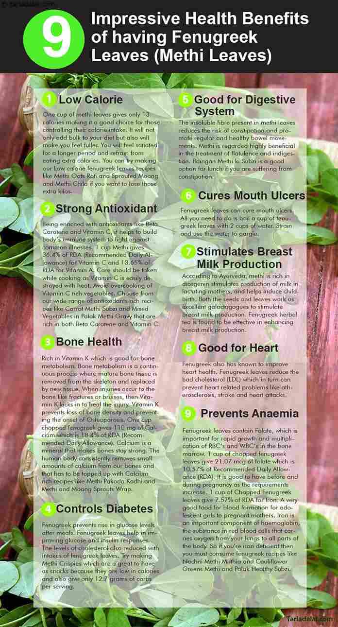 9-Health-Benefits-of-having-Fenugreek-Leaves,-Methi-Leaves